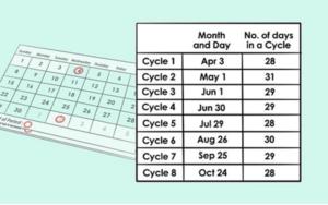 Tính ngày rụng trứng chu kì kinh nguyệt 30 ngày cho phụ nữ